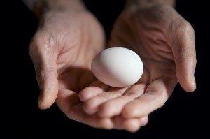 egg_hands-300x199